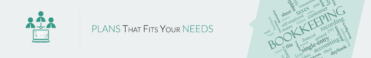 online |offline| remote velan  bookkeeping services